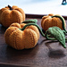 Cute little pumpkin patch pattern