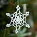 Dainty Lace Snowflake pattern