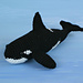 Orca - Killer Whale pattern