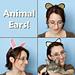 Animal Ears pattern