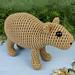 Capybara pattern