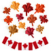 Maple Leaf Collection & Canadian Flag pattern