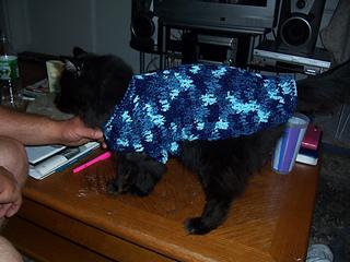Spooky modeling sweater