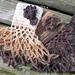 Mme. Drusilla's Ruffle Cuffs pattern