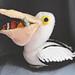 Toy Pelican pattern