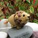 Boris the Tiny Lion pattern