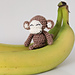 Mini-mal Monkey pattern
