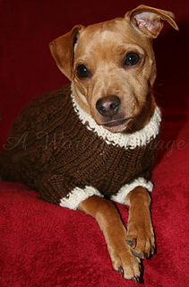 Reilly's Besotted Sweater