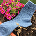 Pollinator Socks pattern