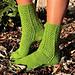 Deciduous Socks pattern