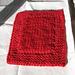Double-knitting Pot-handler (February) pattern