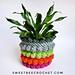 Bobble Pop Plant Cozy pattern