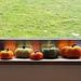 Sideways Pumpkin pattern