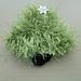 Christmas Tree  Embellishment pattern