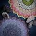 Lotus & Blossom Mandala pattern