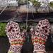 Tre nøtter til Askepott pattern