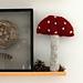 Wooly Mushroom pattern