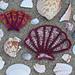 Scallop Shell Motif pattern