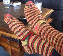 Ribbed Sock in Socks That Rock