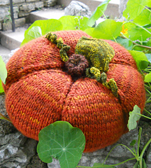 pillow-toss pumpkin