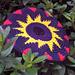 Sunburst Pocket Flyer pattern